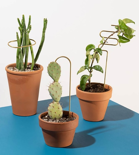 Poketo Plant Sticks