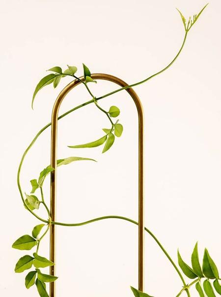 Brass Plant Stick