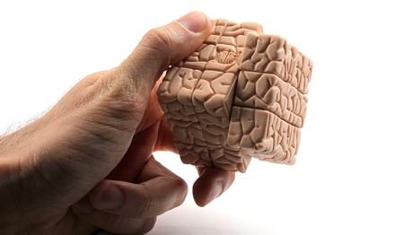 Jason Freeny Brain Rubiks Cube