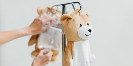 Teddy Bear IV Bag
