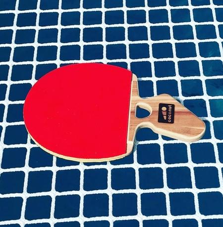 Coconut Paddle V2