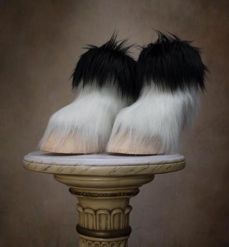 Animal Hoof Shoe