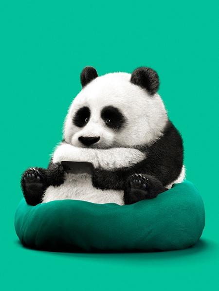 Guodong Zhao Lazy Animals