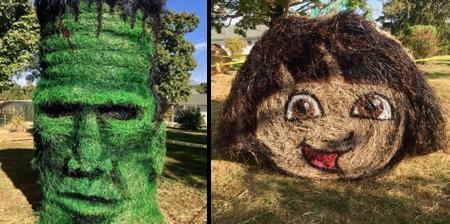 Halloween Hay Art