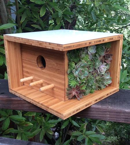 Modern Bird House