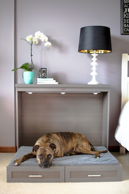 Pull Down Dog Bed
