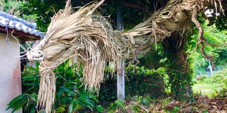 Palm Tree Dragon