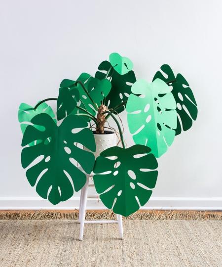 Paper Plant