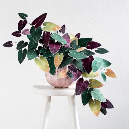 Corrie Beth Hogg Paper Plants