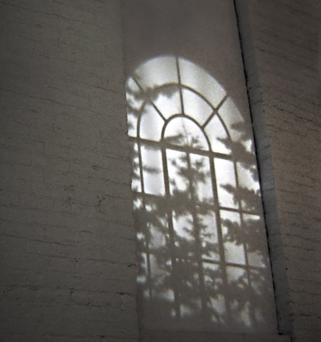 Window Light