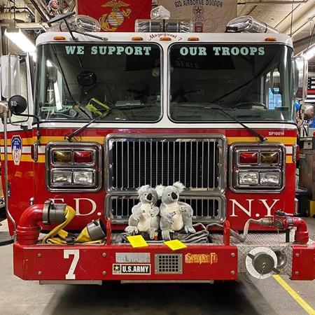 Koala Toys in New York City
