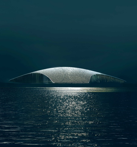 Whale Tail Building