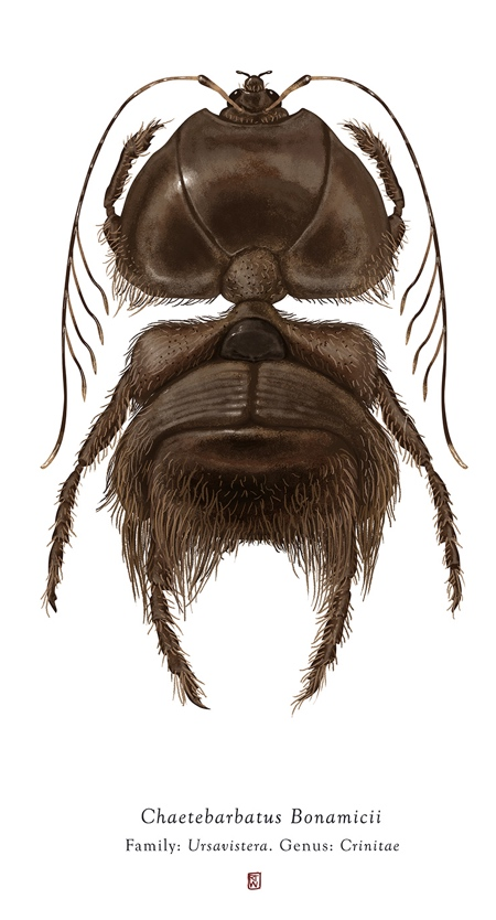 Richard Wilkinson Star Wars Insects