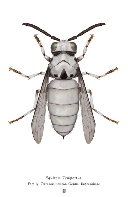 Richard Wilkinson Bugs