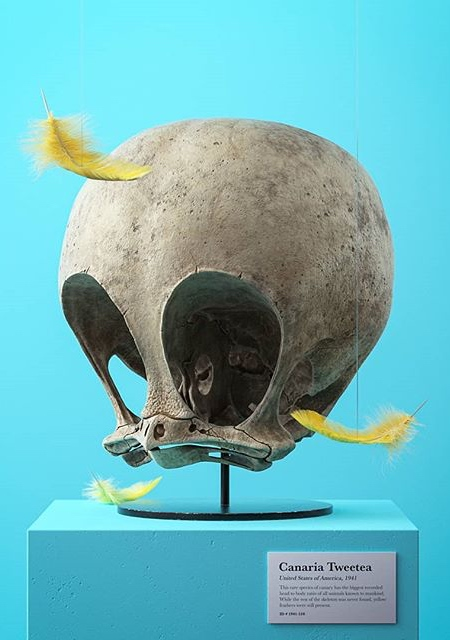 Filip Hodas Cartoon Skulls
