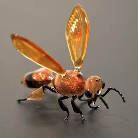 Glass Insect