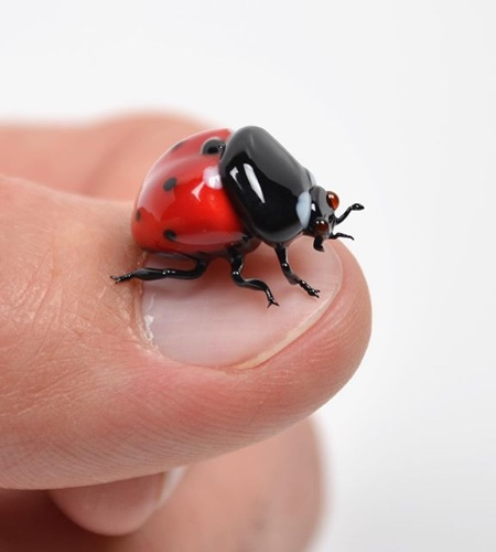 Insects Made of Glass