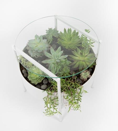 Palm Urban Green Glass Table