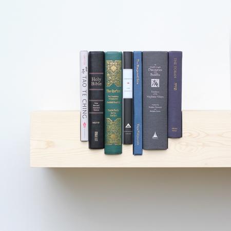 Mike and Maaike Juxtaposed Bookshelf