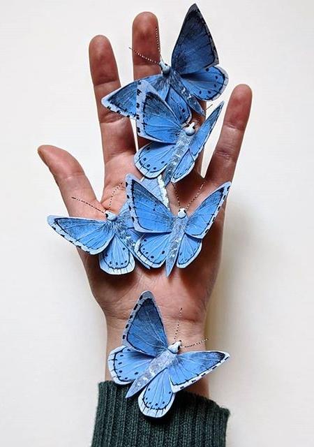 Kerilynn Wilson Paper Butterflies