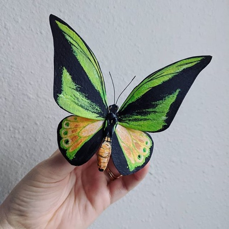Butterfly Made of Paper