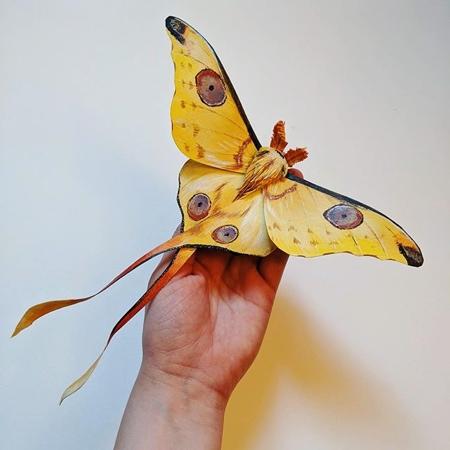 Kerilynn Wilson Paper Butterfly