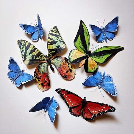 Kerilynn Wilson Butterflies