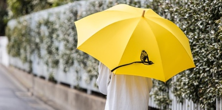 Umbrellas with Tails