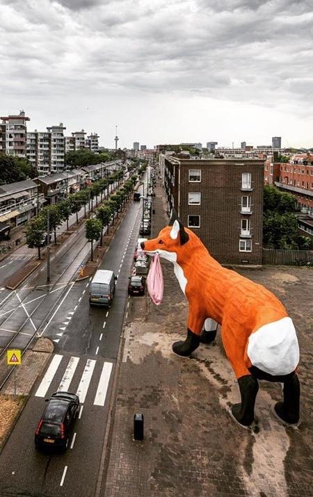 Rotterdam Giant Fox