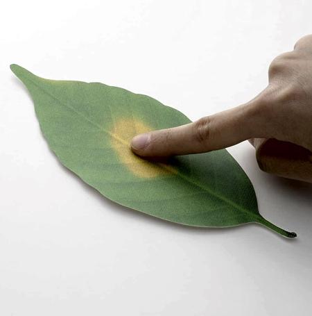 Hideyuki Kumagai Leaf Thermometer
