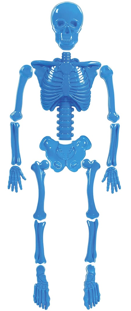 Human Bones Sand Mold