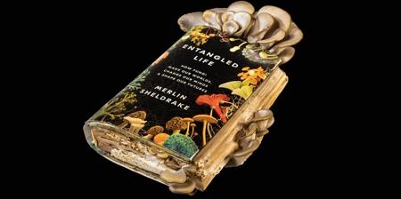 Book of Mushrooms