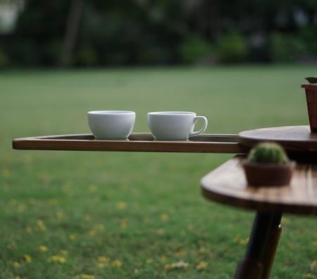 Wooden Beetle Coffee Table