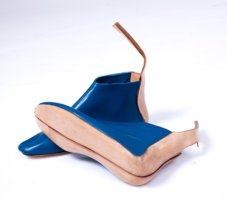 Tal Weinreb Shoebag