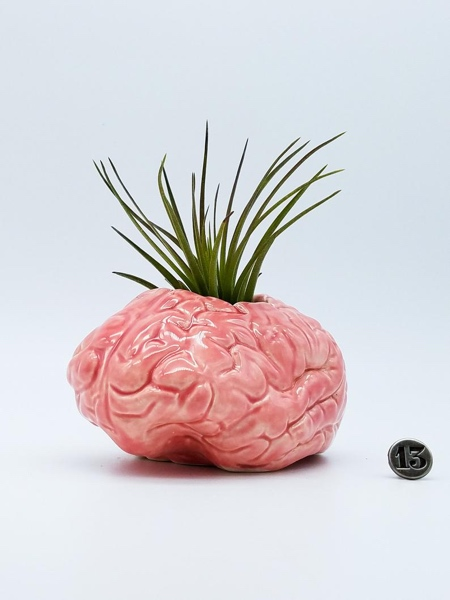 Brain Vase