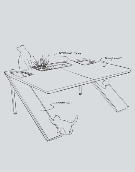 Cat Friendly Desk