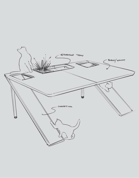 Cat Friendly Desk