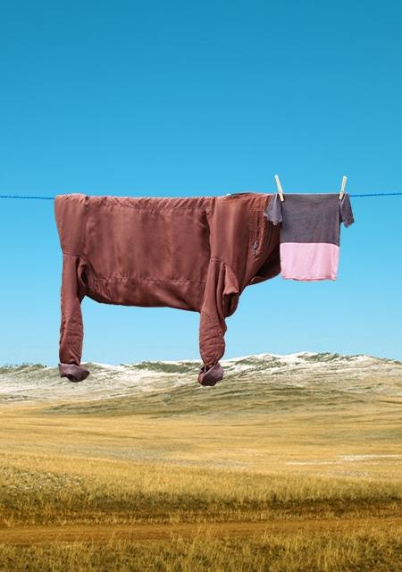 Clothing Bull