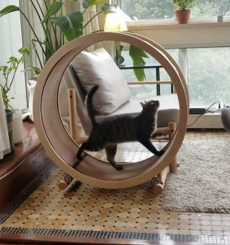 Cat Loveseat Chair