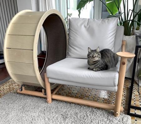 Full Moon Chair