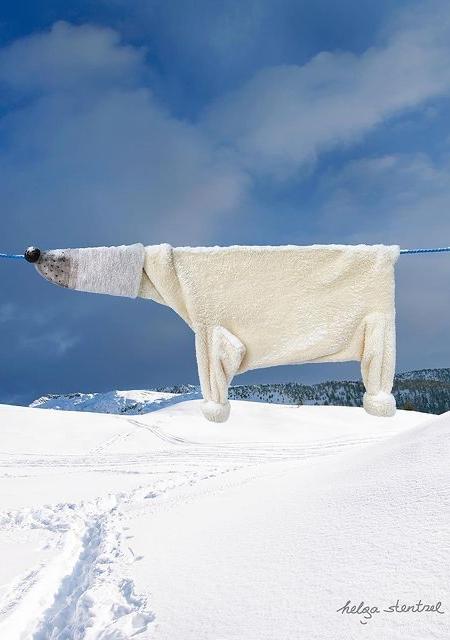 Helga Stentzel Polar Bear