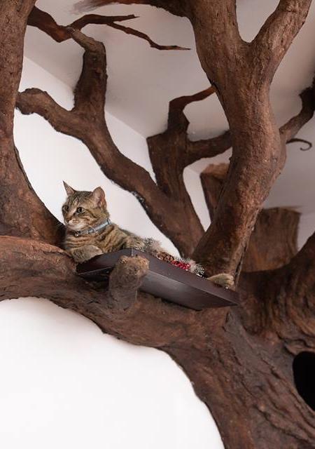 Realistic Cat Tree