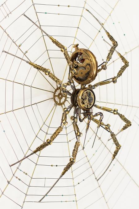 Peter Szucsy Spider