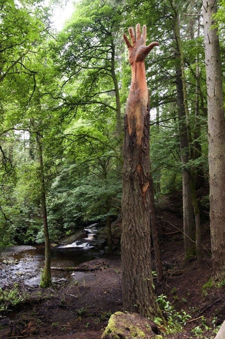 Human Tree Hand