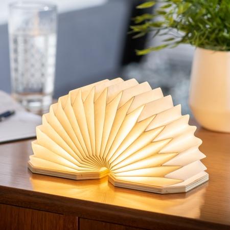 Accordion Inspired Lamp