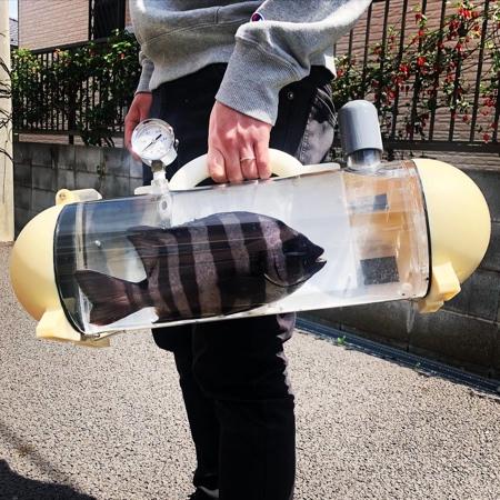 Katsugyo Bag