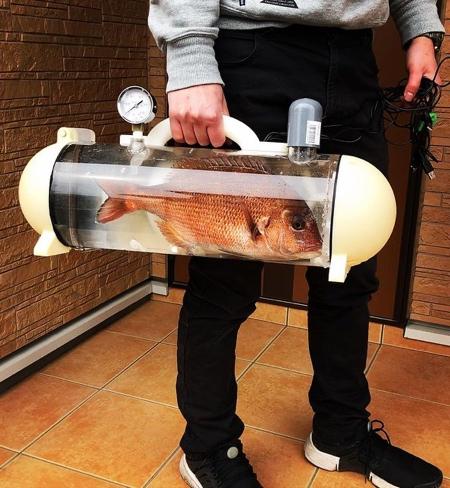 Portable Fish Bag