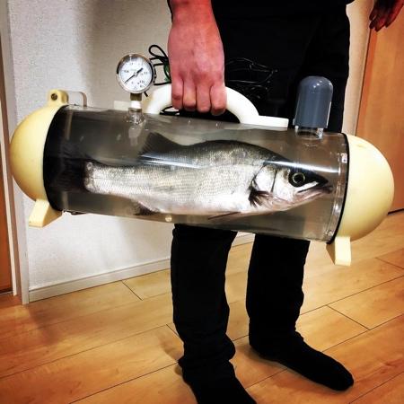 Portable Fishbowl