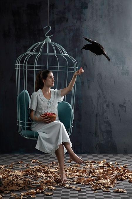 Birdcage Swing Chair