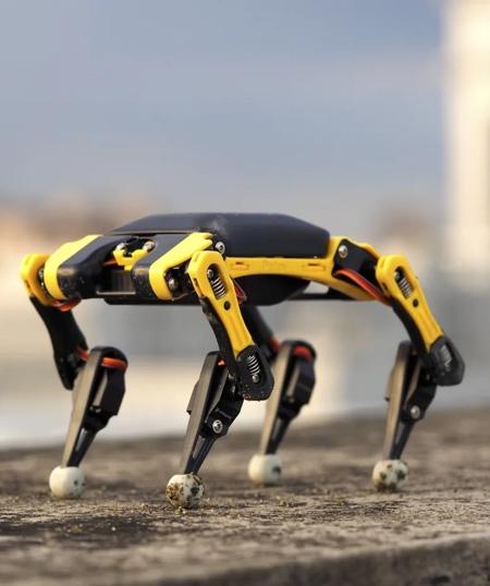 STEM Robot Dog